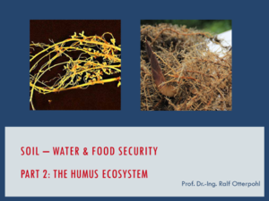 soil - water & food security part 2: the humus ecosystem